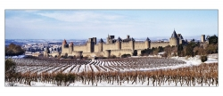 cite-de-carcassonne-cdc-002