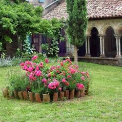 Abbaye-Villelongue-2010_0620Villelongue0010