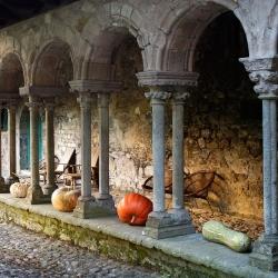 Abbaye-Villelongue-DSC_1824