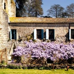 Abbaye-Villelongue-DSC_4131