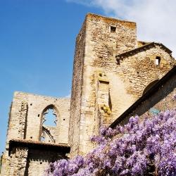 Abbaye-Villelongue-DSC_4137