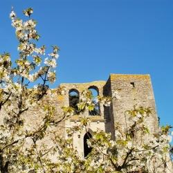 Abbaye-Villelongue-DSC_6707