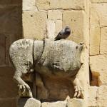 Abbaye-Alet-les-Bains-_PLD4615_DxO