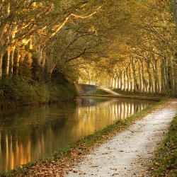 Canal-du-Midi-Coulee-Or