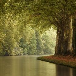 Canal-du-Midi-Coulee-Verte