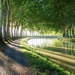 Canal-du-Midi-Evanescence
