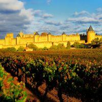 Cite-de-Carcassonne-Jaune