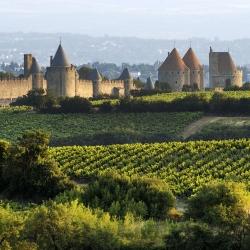 Cite-de-Carcassonne-Petit-Matin