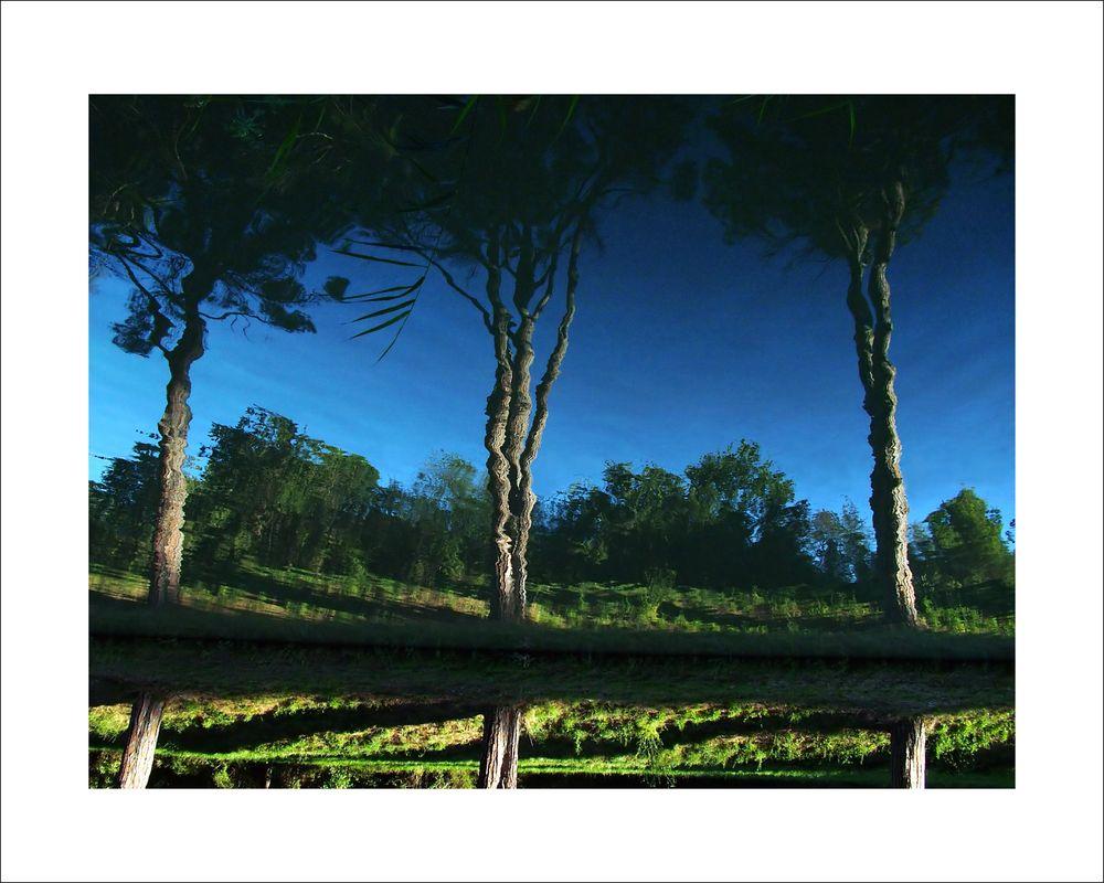pins_bleu_vert