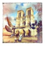 Polaroid-PolaPL-001-Notre-Dame-Pigeons