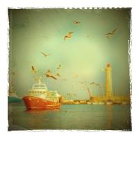 Polaroid-Sete-Etang-de-thau-POL017
