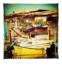 Polaroid-Sete-Etang-de-thau-POL025