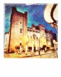 Polaroid-Narbonne-Palais-des-Archeveques-POL008