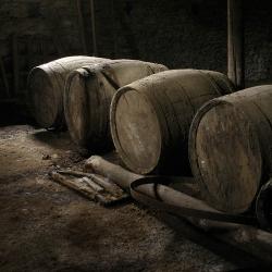 Vigne-et-vin-DSC_6031