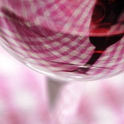 Vigne-et-vin-DSC_8143
