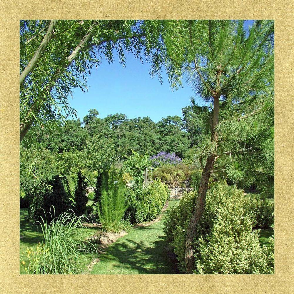 Extrait le jardin aux plantes parfum es ditions for Jardin aux plantes